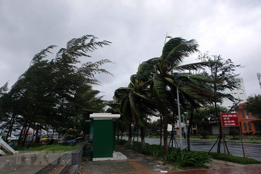 Gió lớn giật mạnh trên tuyến đường ven biển Nguyễn Tất Thành