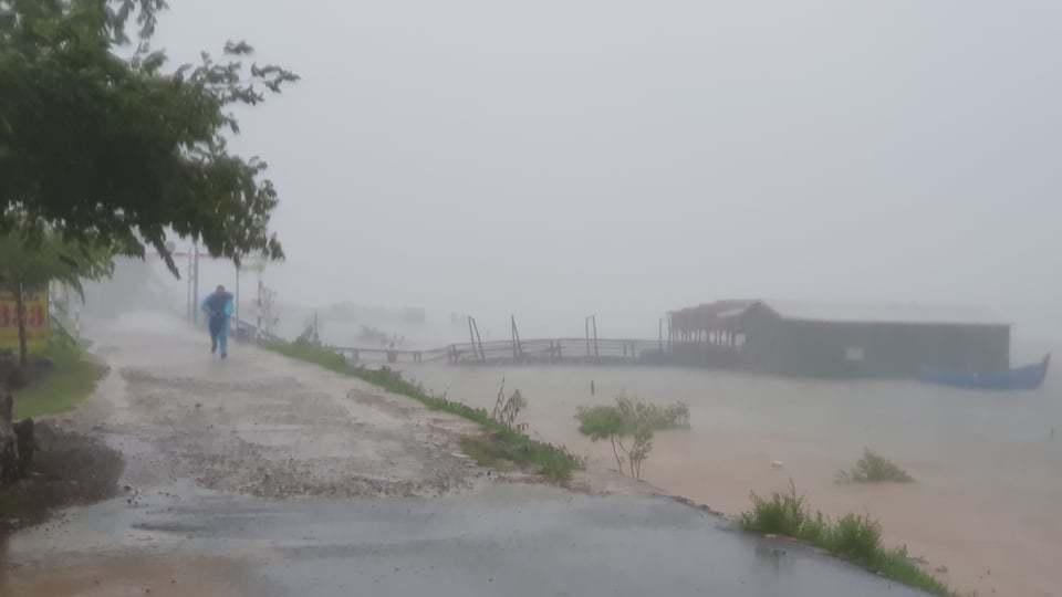 Bão số 9 'quần thảo' Đà Nẵng - Phú Yên mưa to gió lớn, cây xanh ngã đổ