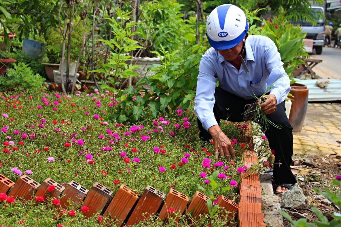 Con đường ô nhiễm, đầy rác giờ rực rỡ sắc hoa ở Sài Gòn