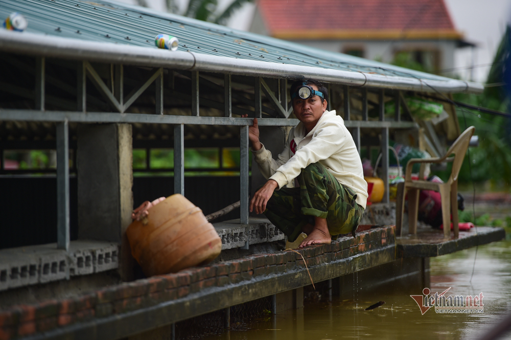 Hình ảnh chạy lũ chưa từng có của người dân Quảng Bình